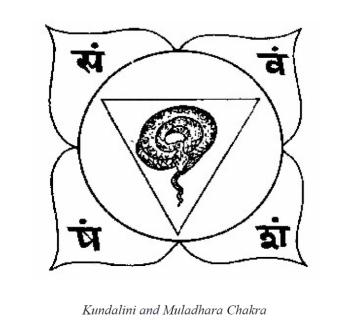 Kundalini and Muladhara Chakra