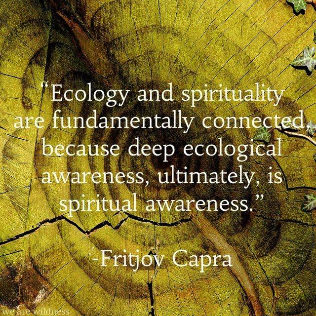 Ecology and Spirituality