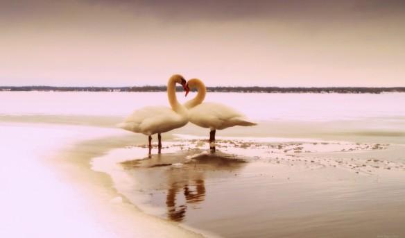 sweet heart...