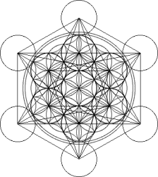 flower of life in a cube